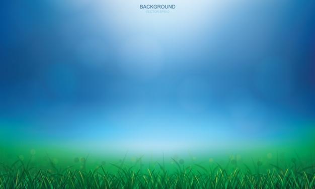 Campo di erba verde e luce sfocato sfondo bokeh.