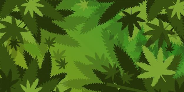 Canapa medica o foglie di marijuana sfondo canapa legalizzare il concetto di consumo di droga orizzontale