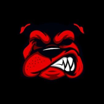Cane bull arrabbiato