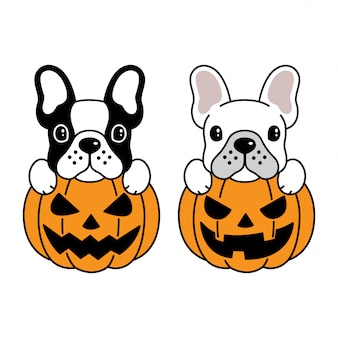 Cane bulldog francese zucca di halloween