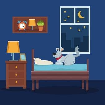 Cane da compagnia colorato scena sul letto in camera durante la notte