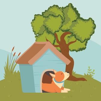 Cane del cartone animato