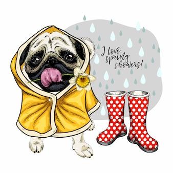 Cane del pug di vettore disegnato a mano in impermeabile e stivali di gomma.