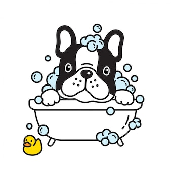 Cane francese bulldog bagno doccia gomma anatra cartoon