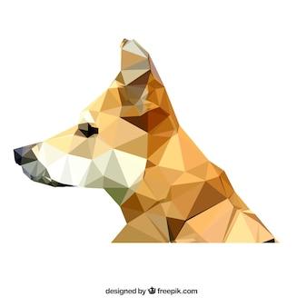 Cane poligonale