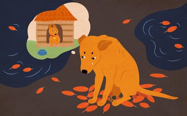 Cane senza casa triste che si siede sulla strada ricoperta di foglie di autunno e pozzanghere