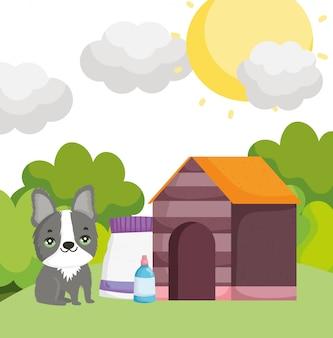 Cane sveglio con gli animali domestici all'aperto dell'alimento e della bottiglia della casa