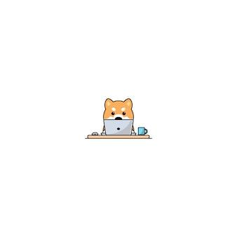 Cane sveglio di inu di shiba che lavora ad un computer portatile