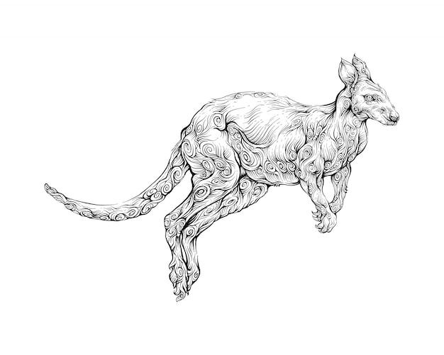 Canguro nel disegno a mano ornamento