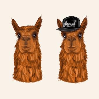 Carattere alpaca