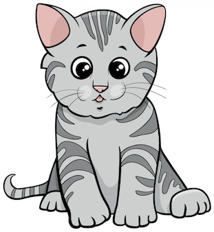 Carattere animale del gattino del tabby grigio