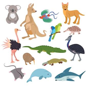Carattere animalesco animali australiani nella fauna selvatica australia canguro koala e squalo illustrazione set di cartoon wombat selvatico ornitorinco ed emu isolato su sfondo bianco