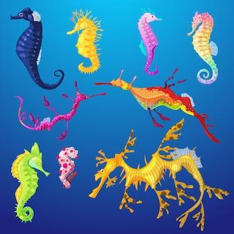 Carattere di pesce di mare cavalluccio marino o cartone animato cavalluccio marino sottomarino in fauna selvatica tropicale illustrazione set di cavalluccio marino esotico in acquario o oceano sullo sfondo