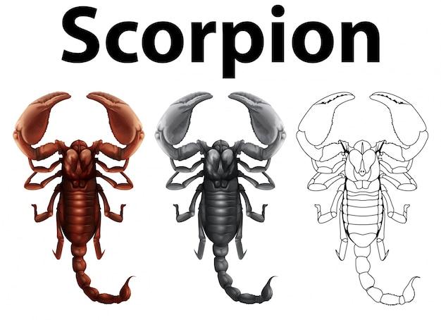 Carattere doodle per l'illustrazione dello scorpione