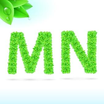 Carattere sans serif con decorazione a foglia verde