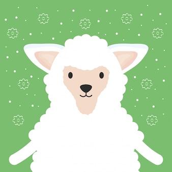 Carina adorabile personaggio delle pecore