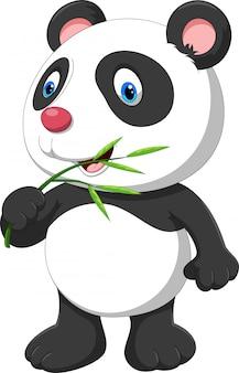 Carino baby panda con bambù