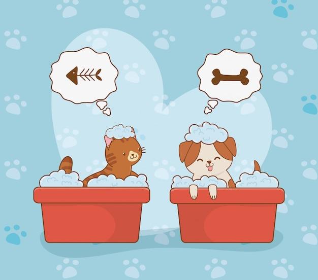 Carino piccolo cagnolino e gattino mascotte