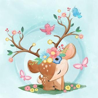 Carino primavera cervo