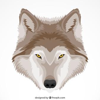 Carino sfondo lupo con gli occhi gialli