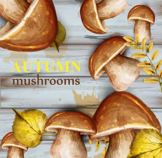 Carta acquerello di funghi