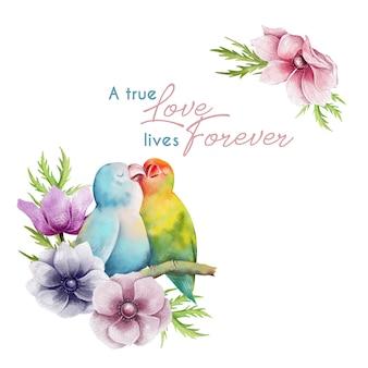 Carta di san valentino disegnata a mano con pappagalli in amore