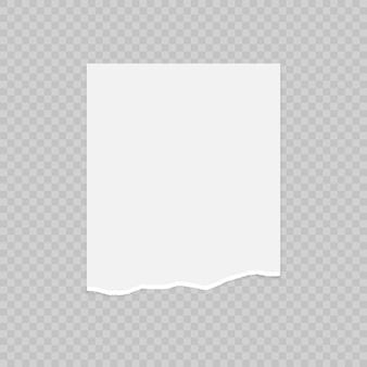 Carta strappata con bordi strappati