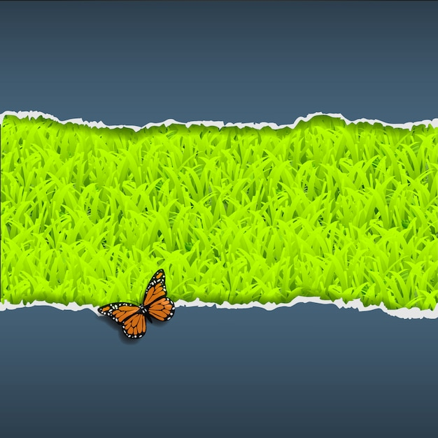 Carta strappata con erba e farfalla