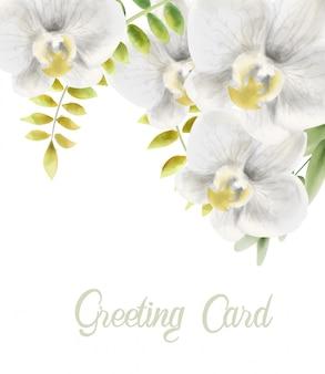 Cartolina d'auguri di fiori di orchidea bianca dell'acquerello
