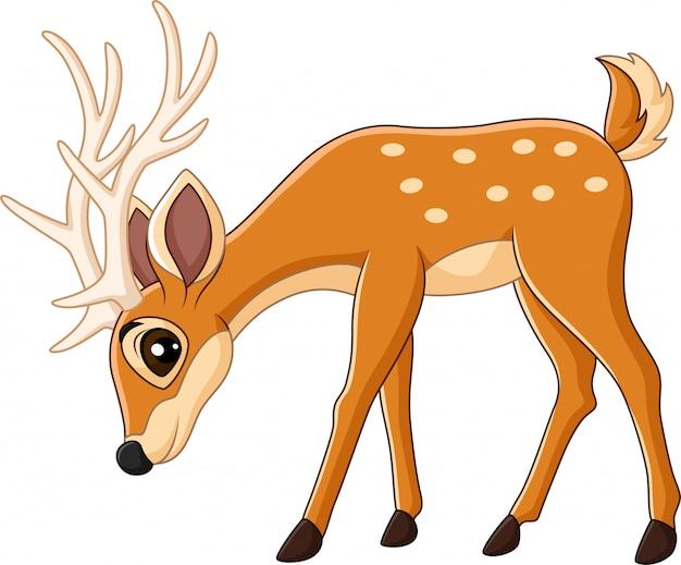 Cartone animato carino cervi