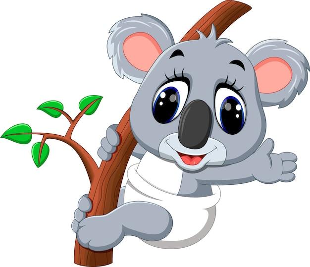 Cartone animato carino koala