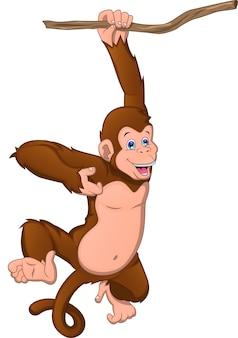 Cartone animato carino scimmia su uno sfondo bianco