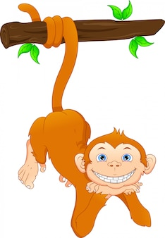 Cartone animato carino scimmia