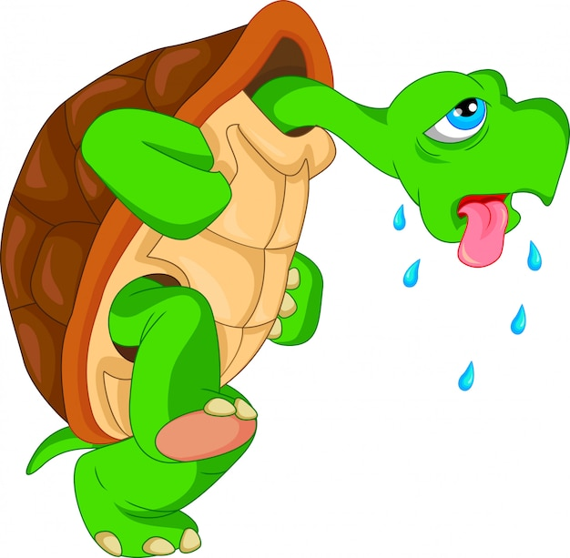 Cartone animato carino tartaruga verde