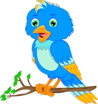 Cartone animato carino uccello