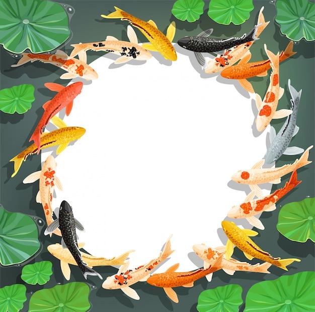 Cartone animato carpe koi. sfondo cornice vettoriale