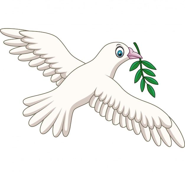 Cartone animato colomba con un ramoscello d'ulivo