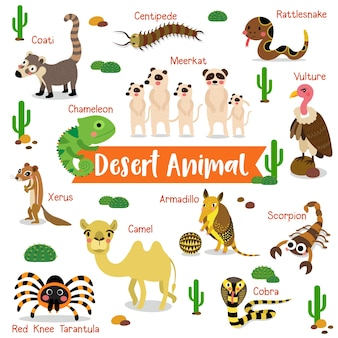 Cartone animato di animali del deserto con nomi di animali