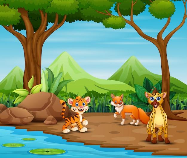 Cartone animato di animali selvatici che vivono nella foresta