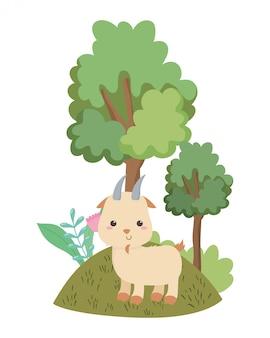 Cartone animato di capra isolato