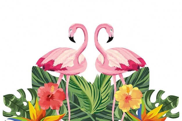Cartone animato di fenicotteri tropicali