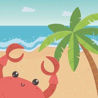 Cartone animato di granchio in spiaggia