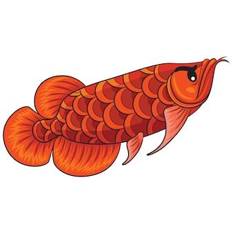 Cartone animato di pesce arowana