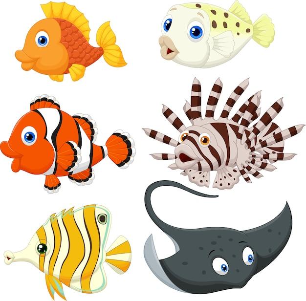 Cartone animato di pesci tropicali