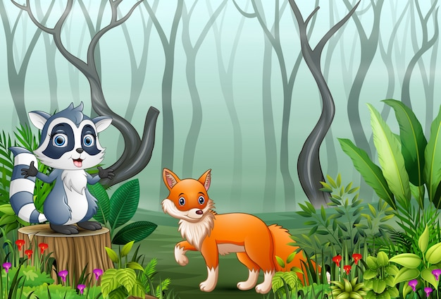 Cartone animato di procione e volpe nella foresta nebbiosa