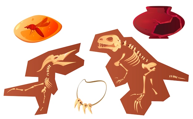 Cartone animato di reperti archeologici e paleontologici