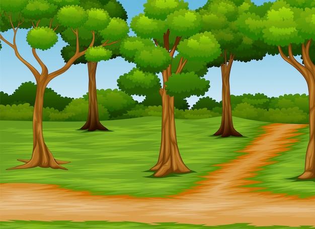 Cartone animato di scena foresta con strada sterrata