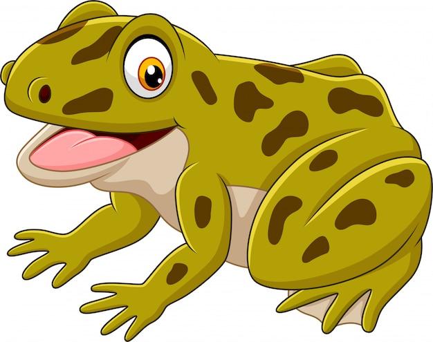 Cartone animato felice rana verde