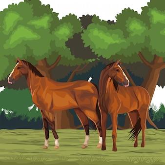 Cartone animato icona cavallo