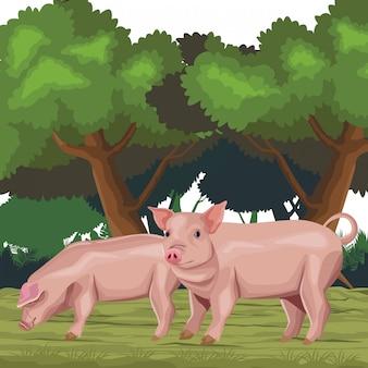 Cartone animato icona di maiale